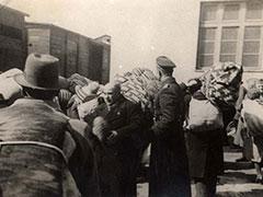 holocaust12-80