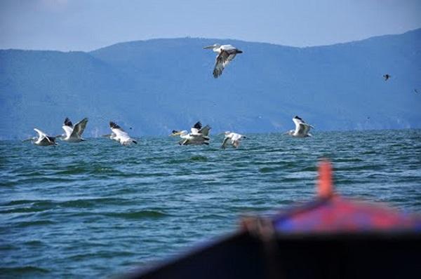 prespansko-ezero