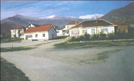 peci1